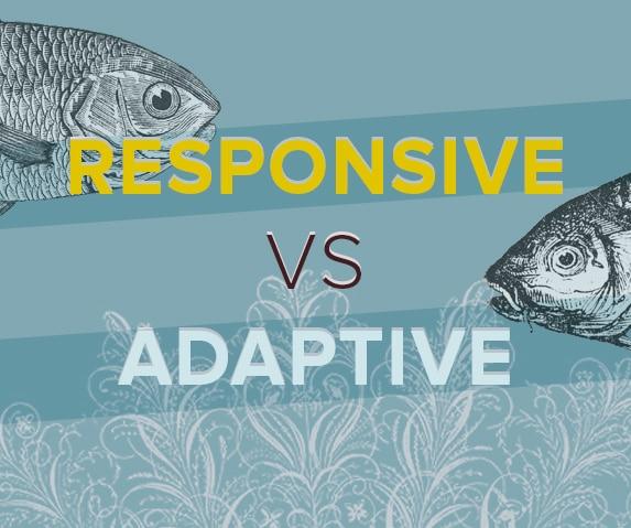 Diseño responsive vs adaptive