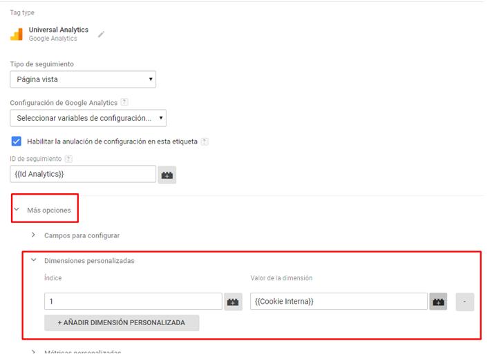 Dimensiones personalizadas Google Tag Manager más opciones